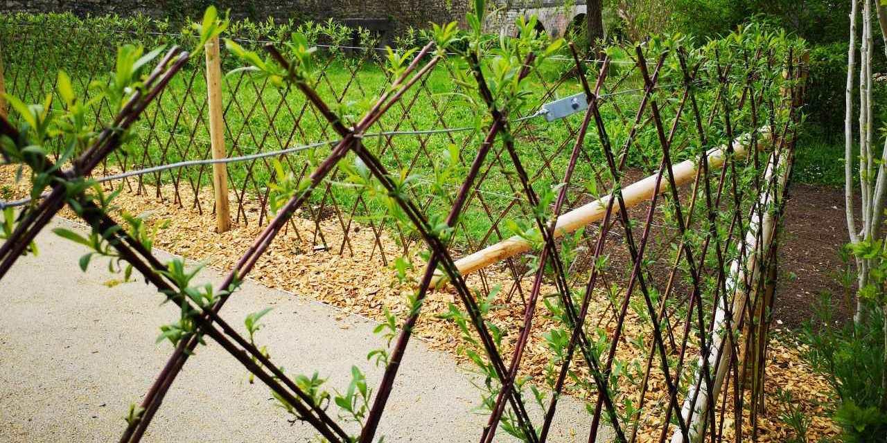 MB Paysage clôtures et aménagement